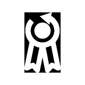 icon-award